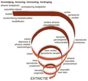 Extinctievortex
